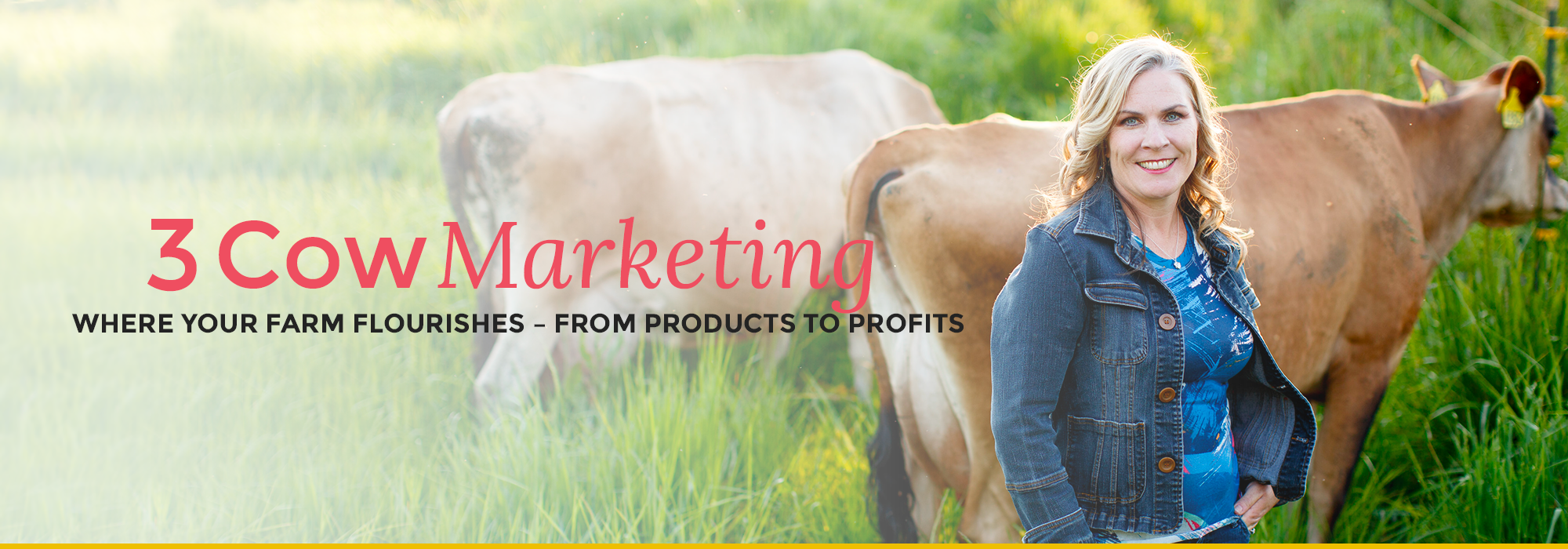 3 Cow Marketing header image